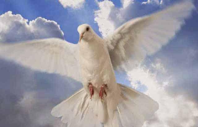 Como Restaura a Paz Interior Com o Espírito Santo Mensagem de Paz - Mensagem de Paz - Restaurar a Paz Interior Com o Espírito Santo