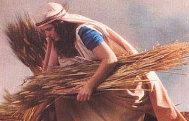 historias biblicas a historia de rute - História de Rute - Histórias Bíblicas