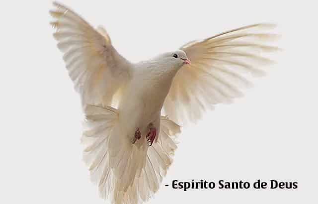 deixa o espirito santo de deus falar com voce - O Espírito Santo Vai Falar Com Você - Clique Aqui e Veja