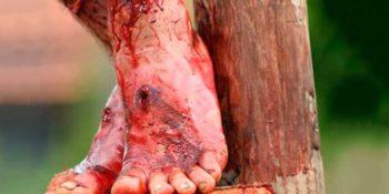 SOBRE JESUS – UMA NOTÍCIA QUE ESTÁ ABALANDO O EGITO!
