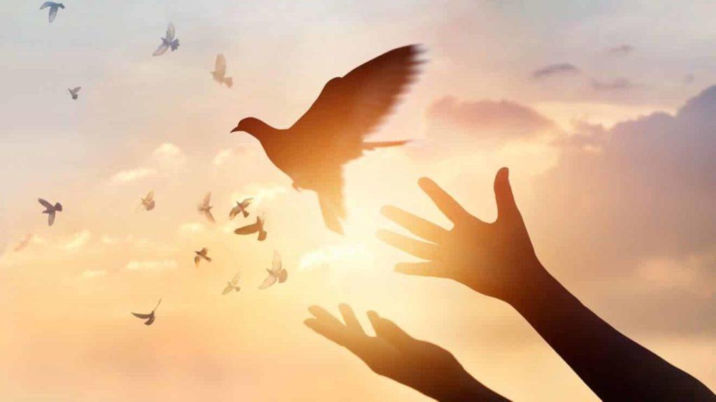 tudo o que voce precisa saber sobre os dons do espirito santo 1024x576 - Tudo o Que Você Precisa Saber Sobre os Dons do Espirito Santo