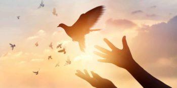 São 7 os dons do Espírito Santo que podem transformar a sua vida