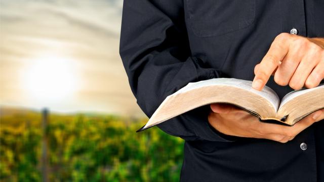 biblia e estudo - Curso de Teologia OnLine do Conhecimentos do Pai