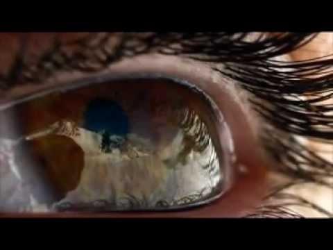 hqdefault - O Que Você Fará Depois de Ver Esse Vídeo?